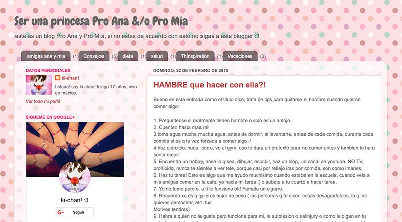 Portada de Blog. Crédito: serprincesasproanaypromia.blogspot.mx