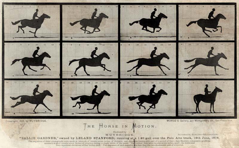 Los experimentos de Eadweard Muybridge. Fuente: pforphoto.wordpress.com